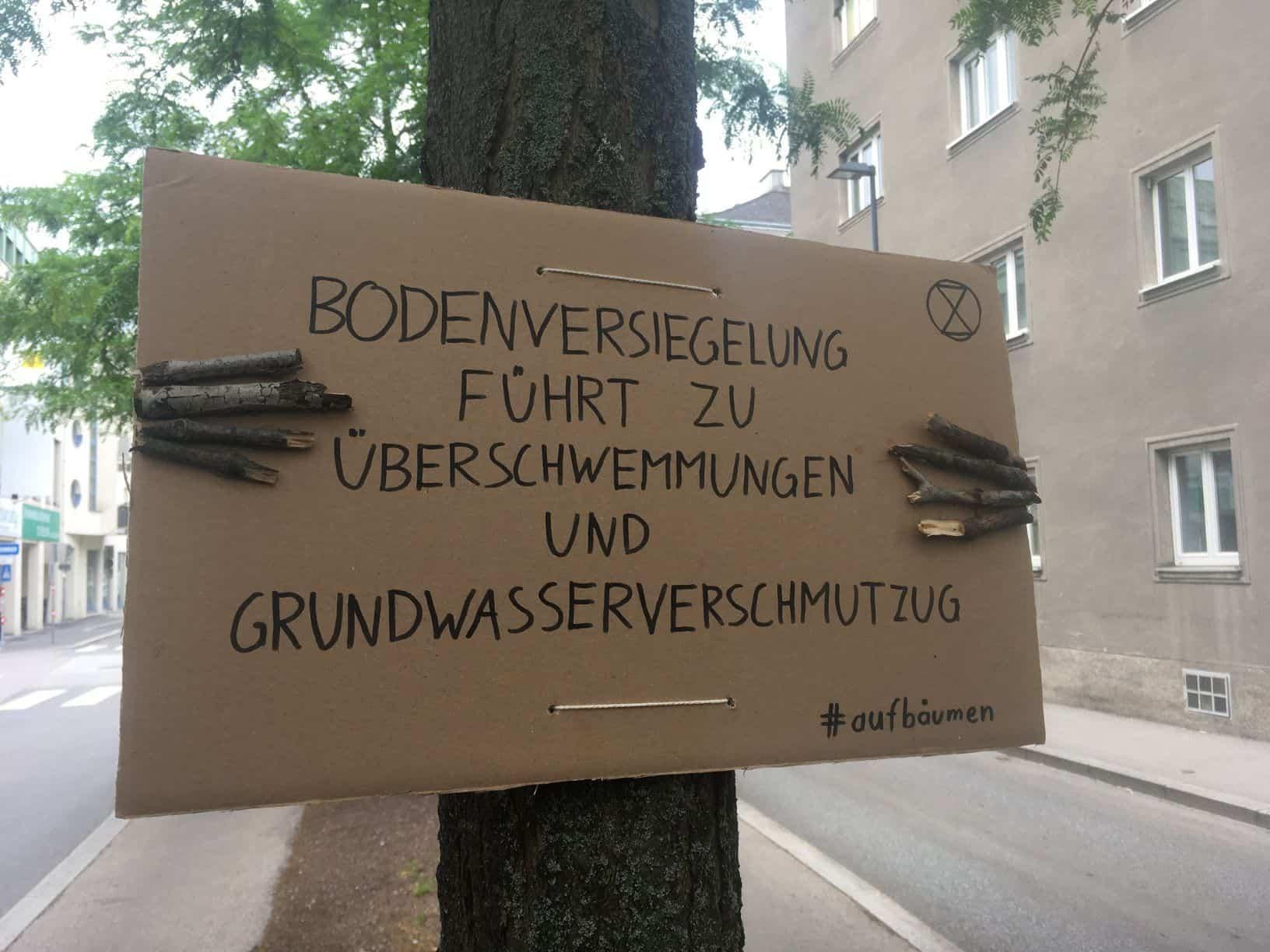in Baum hält ein Schild und demonstriert gegen die Bodenversiegelung (Akion #aufbäumen)