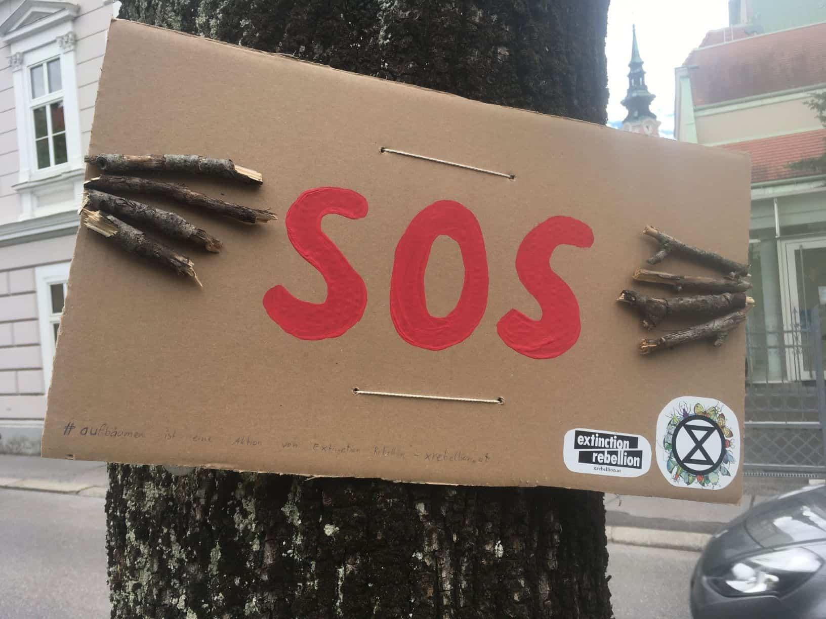 Ein Baum hält ein Schild und ruft um Hilfe (Aktion #aufbäumen)